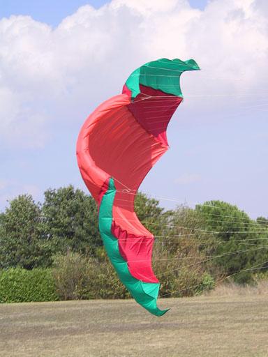 Nasa ParaWing, a pure traction kite...