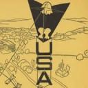 U. S. Eagle Kite
