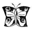 Schmetterlingsdrachen