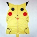 Pokemon Kite