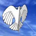 Bird Paper Kite
