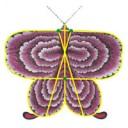 Mariposa China