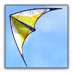 Freestyle kites